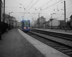 tran-train-nb.jpg