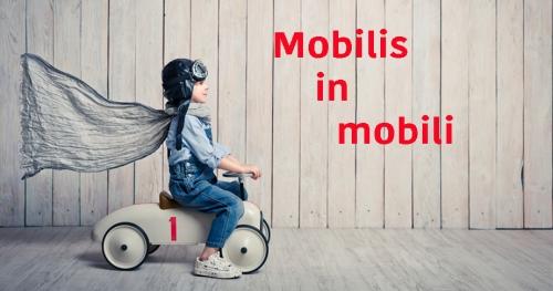 mobilis-in-mobili-2.jpg